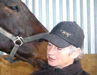 Equestrian consultancy - behavioural problems